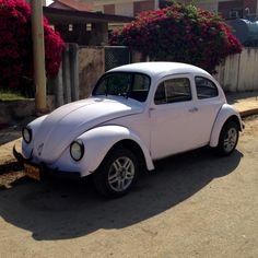 A pink & black themed Beetle