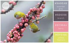 Birds & Berries - Color makes a design come alive.
