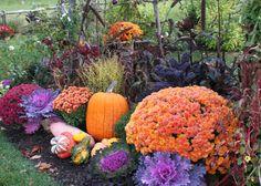 fall display...photo - Jan Johnsen