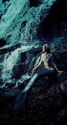 Fantasy Mermaids, Real Mermaids, Mermaids And Mermen, Mermaid Photo Shoot, Mermaid Pictures, Mermaid Cove, Mermaid Art, Mermaid Tails, The Ocean