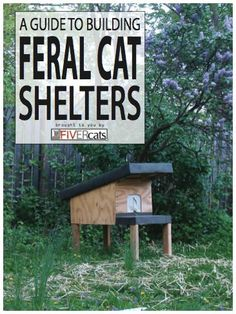 Steal unique Marvelous Feral Cat House Plans Cat House Plans Feral Cat Condos design recommendations from Marie Cook to redesign your space. Feral Cat Shelter, Feral Cat House, Feral Cats, Animal Shelter, Cat Shelters, Winter Cat Shelter, Shelter Dogs, Shelter Architecture, Outdoor Shelters