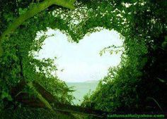 Green Nature Love Wallpaper : Check out the cool latest Green Nature images. High Definition desktop wallpapers to make your desktop cool G. Heart In Nature, Heart Art, Love Heart, Nature Nature, Green Nature, Nature Study, Nature Quotes, Love Wallpaper, Nature Wallpaper