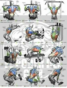Shoulder Workout Routine To Add Serious Size To Your Shoulders. How To Get The Most Out Of This Shoulder Workout. Moving your muscle Gym Workout Tips, Weight Training Workouts, Fitness Workouts, Training Exercises, Body Workouts, Lat Workout, Triceps Workout, Gym Back Workout, Lifting Workouts