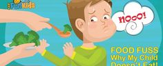 Are You Worried About Why Your Child Does'nt Eat? It could be because he has sensitive tastebuds, or the food looks boring or he has already binged on junkfood. Find out in which category of fussy eater your child belongs to! Fussy Eaters, Junk Food, My Children, Your Child, Healthy Eating, Blog, Ideas, Eating Healthy, Healthy Diet Foods