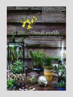 Press - Flora Grubb Gardens Flora Grubb, Garden Terrarium, Small World, Muse, Gardens, Glass, Furniture, Decor, Landscaping