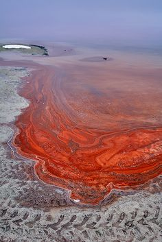 ✯ Great Salt Lake, Utah (The red swirls are brine shrimp eggs)