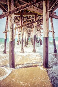 nice Under the Pier in Southern California Picture