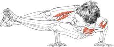 Astavakrasana (eight-angle pose) via Leslie Kaminoff