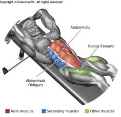 DECLINE REVERSE CRUNCH - The exercise involves the rectus abdominis and in particular the lower part of the muscle. Mens Fitness, Fitness Tips, Fitness Motivation, Health Fitness, Abdominal Exercises, Abdominal Muscles, Gym Workouts, At Home Workouts, Reverse Crunches