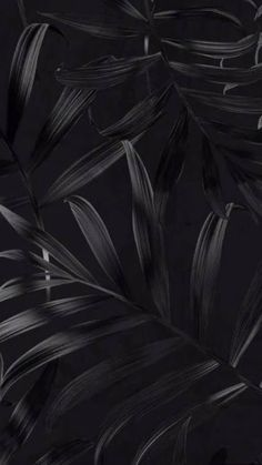 Screen Savers Black Wallpaper Backgrounds 50 Ideas For 2019 Black Background Wallpaper, Black Phone Wallpaper, Phone Wallpaper Images, Dark Wallpaper, Screen Wallpaper, Black Backgrounds, Wallpaper Backgrounds, Wallpaper Lockscreen, Phone Wallpapers