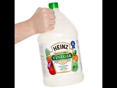 VINEGAR The ultimate prep  prepping solution  Homemade rust remover , cl...