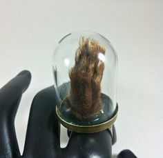Specimen Ring. Real marten's paw in a tall curio ring by CleverKimsCurios, $30.00  Weird goth reliquary ring