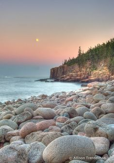 MAINE  COASTAL HOMES INTERIOR | The beautiful, wild landscape surrounding Allison provides constant ...