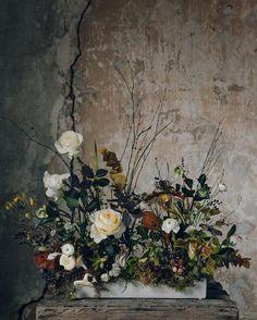 Photographer • Colour Organiser • Half of @haarkon_ White Flower Arrangements, Flower Centerpieces, Centrepieces, Fall Flowers, Beautiful Flowers, Cut Flowers, Colorful Flowers, Purple Flowers, Ikebana