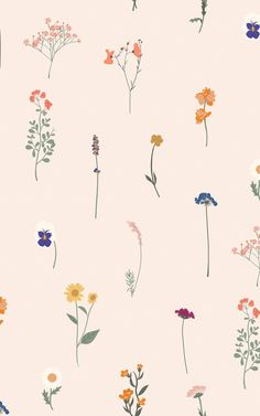 Decorate your space with floral design in a delightfully different way. Our Florist wallpaper is a colourful repeat pattern inspired by beautiful pressed flower art – featuring an eye-pleasing range of delicate flower breeds. The bright orange, yellow, pink, blue, and purple colours of the hand-illustrated petals will bring Spring and Summer feelings into your home all year round. Butterfly Wallpaper, Pink Wallpaper, Pattern Wallpaper, Vintage Floral Wallpapers, World Map Wallpaper, Pink Home Decor, Pressed Flower Art, Different Flowers, Hand Illustration