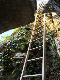 #nature #foret #randonnée pédestre #rocher #échelle Ladder, Nature, Paths, Pathways, Drill Bit, Stairway, Naturaleza, Nature Illustration, Off Grid