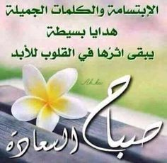 Morning Dua, Good Morning Arabic, Morning Wish, Good Morning Beautiful Images, Good Morning Images Hd, Morning Greetings Quotes, Morning Quotes, Good Evening Wishes, Mom And Dad Quotes