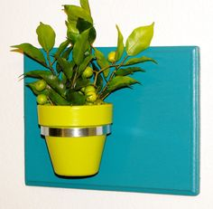"""11.5"""" x 8.5"""" Turquoise Large Rectangular Indoor / Outdoor Wall Planter with Green Pot"""