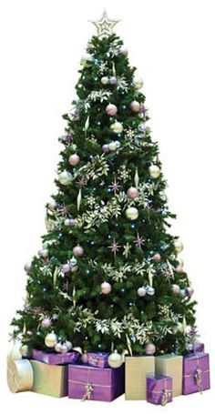 Tree by GP Plantscape