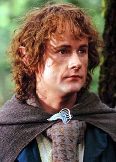 Peregrin Took. Pippin is the youngest and has three sisters. Merry is an only child...that's probably why the two cousins were such good friends.