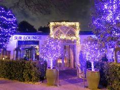 SUR Restaurant & Lounge | Guillermo & Nathalie Zapata | Lisa ...