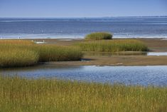 Brewster, Cape Cod making Yankee Magazine picks the 25 Best Beach Towns in New England...8 others are right here on Cape Cod!