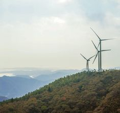 Good winds are blowing in Japan- Global wind turbine manufacturers are gearing up to seize renewable energy opportunities in the land of the rising sun.  Key players in this venture include General Electric of the U.S. and Germany's Siemens which are set to supply wind turbines specifically targeted for Japan - where the storm-prone climate requires more durable construction. . . . . #wind #windy #windturbine #windturbines #greenenergy #renewableenergy #cleenenergy #windpower #windofchange…