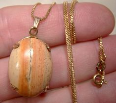 10K Petrified Wood Scenic Agate Pendant Necklace 1960s 10 K Chain