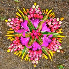 ✶ ARIZONA-based artist Kathy Klein constructs vibrant mandalas from organic materials, including flowers and produce gathered from her friends' gardens as well as her own Cornville farm✶