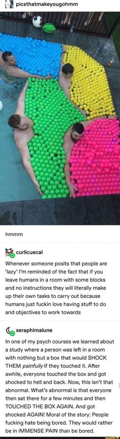 Tumblr Funny, Funny Memes, Jokes, Stupid Memes, Tumblr Stuff, Tumblr Posts, Lol, The More You Know, Faith In Humanity