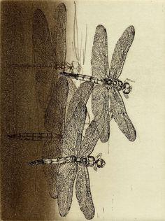PRINT SHOW 2014  artist:No,1 安藤真司 ANDO Shinji 「風のかたち」エッチング、アクアチント 15.6 x 11.8cm etching  aquatint