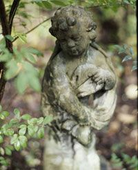 Add years of weathered patina to concrete statues, birdbaths, and gargoyles in… Painting Concrete, Concrete Art, Garden Crafts, Garden Projects, Garden Ideas, Art Crafts, Outdoor Projects, Patio Ideas, Garden Inspiration