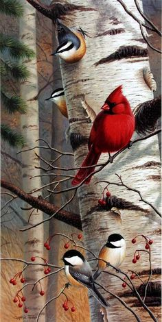 Cardinals and Chickadees are perched on this birch tree in Cynthie Fisher's bird print Unannounced Visitors II. Pairs with Unannounced Visitors I. Comes in an open edition unframed image size of by francisca All Birds, Little Birds, Pretty Birds, Beautiful Birds, Cardinal Birds, Bird Pictures, Wildlife Art, Bird Prints, Bird Art