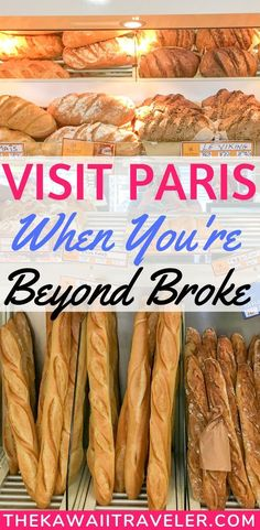 Traveling to Paris France but on a super tight budget? Well, I have the best budget travel tips to help you save money while traveling in Paris! Find where to stay in Paris, where to eat, and how to get a cheap flight to Paris! Budget travel tips Travel Europe Cheap, Paris Travel Tips, France Travel, Budget Travel, Travel Hacks, Travel Goals, Traveling To France, European Travel, Travel Rewards