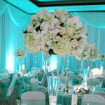 This is definitely the style and colors my wedding will be.If there is ever a wedding. Tiffany Blue Box, Tiffany Theme, Tiffany Party, Tiffany Wedding, Wedding Wishes, Our Wedding, Dream Wedding, Wedding Reception, Uplighting Wedding