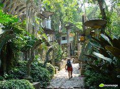 #Jardins de Las Pozas à Xilitla (Mexique): plus de 30 hectares, on peut voir des sculptures surréalistes, des ponts, et une végétation tropicale