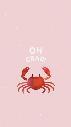 Wallpaper iPhone and Android Wallpapers: Pink Crab Wallpaper for iPhone and Android , - Life and hacks Cute Backgrounds, Cute Wallpapers, Wallpaper Backgrounds, Phone Backgrounds Funny, Wallpapers Android, Sea Wallpaper, Summer Wallpaper, Seagrass Wallpaper, Paintable Wallpaper