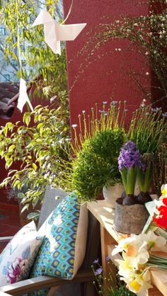 Gracias @aleafloristerias por vuestra increíble colaboración con @myoutdoordesigns.  #aleafloristerias #inspiration #alea #home #chic #decoration #cushions #sun #print #exteriores #living #merienda #outdoor #terrace #terraza #style #vigo #spain #galifornia #plants #plantas #flores #flowers