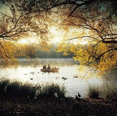 A stunning view of Lake Daylesford, it is a pretty place to walk around or sit down and relax and just admire the view