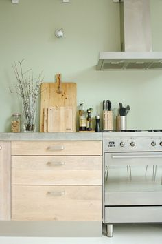 Industrial Kitchen by Holly Marder. Wall color Histor Zorgvuldig 2010-G50Y