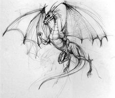 Skulls, steam, and magic: my top ten drawing sketches, pencil drawings, Sketches, Animal Drawings, Drawings, Elements Of Art, Dragon Tattoo Designs, Art, Art Reference, Dragon Art, Dragon Drawing