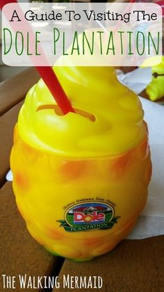 Going to Oahu's Dole Plantation. Here's the perfect guide for visiting the Dole Plantation.