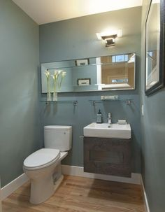 I like the idea of the horizontal mirror.  Contemporary Powder Room Design, Pictures, Remodel, Decor and Ideas - page 6