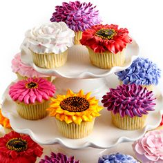 Gorgeous cupcake bouquet