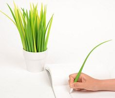 Pooleaf Pen Doubles As Decorative Indoor Plant