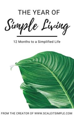 Over the 12 chapters of this simple living ebook, you will be able to slowly implement different simple living habits into your daily life and routine.