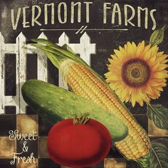 Vermont Farms VII (Color Bakery)