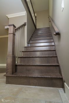 Dark stained staircase with modern stainless spindles Stained Staircase, Timber Staircase, Open Staircase, Staircase Railings, Stairways, Staircase Ideas, Bannister, Open Basement Stairs, Redo Stairs