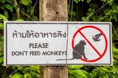 Do not feed #monkeys sign in English and Thai – CreativityGems