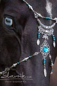 Horses in costume                                                                                                                                                                                 More